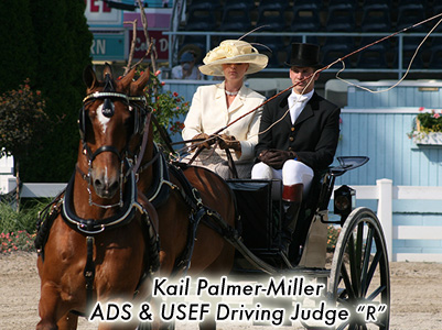 Kail Palmer-Miller, ADS & USEF Driving Judge
